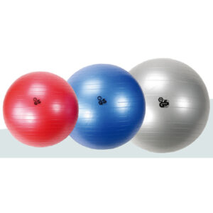Nihon Gymball