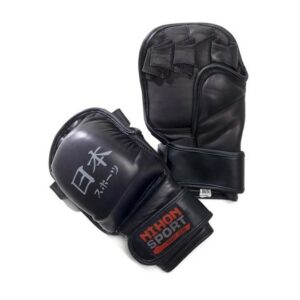 Nihon MMA Glove Training