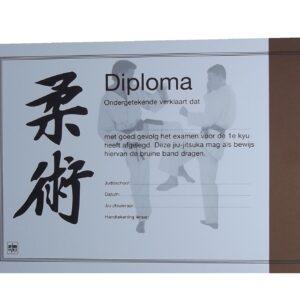 Diploma Jiu-Jitsu Bruine Band