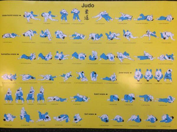 Judo Poster Ne-Waza technieken